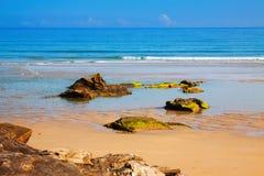 Wild sand beach Royalty Free Stock Photos