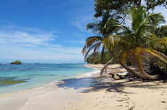 Wild sandy beach with an islet. Tropical wild sandy beach with an islet, coconut trees and turquoise waters stock photo