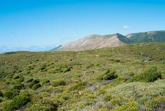 Wild Sardinia Stock Photo