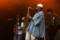 Wild saxophone player stock photography
