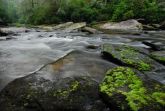 The Wild & Scenic Chattooga River Stock Photo