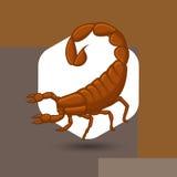 Wild Scorpion Royalty Free Stock Photo