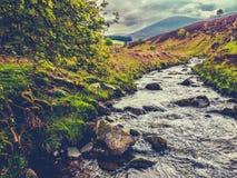 Wild Scotland River Landscape Royalty Free Stock Photography