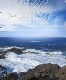 Wild sea Royalty Free Stock Photo