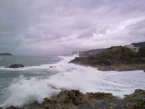 Wild sea Royalty Free Stock Images