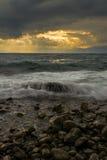 Wild Sea waves Royalty Free Stock Photos