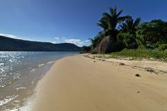 wild seashore Fotografering för Bildbyråer