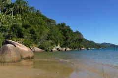 wild seashore Royaltyfri Foto