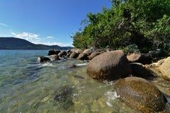 wild seashore Arkivfoto