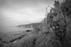 Wild seashore black & white view Royalty Free Stock Photo