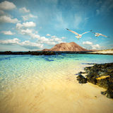 Wild seashore in Fuerteventura, tinted image Stock Photo
