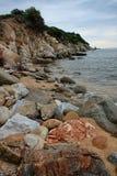 Wild seaside Stock Photography