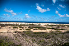 Wild seaside landscape of Aruba in the Caribbean Royalty Free Stock Photos