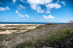 Wild seaside landscape of Aruba in the Caribbean Royalty Free Stock Photography