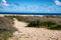 Wild seaside landscape of Aruba in the Caribbean Stock Photo