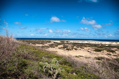 Wild seaside landscape of Aruba in the Caribbean Royalty Free Stock Image