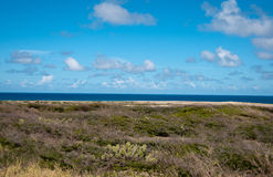 Wild seaside landscape of Aruba in the Caribbean Stock Photography