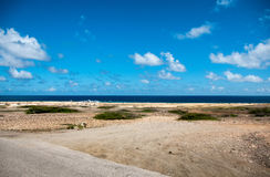 Wild seaside landscape of Aruba in the Caribbean Stock Images