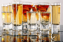 Wild shooters Stock Photography