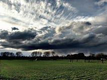 wild sky Royaltyfri Bild