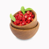 Wild small strawberries in a wooden bowl with leaves. Stock Images