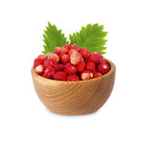 Wild small strawberries in a wooden bowl with leaves. Royalty Free Stock Image