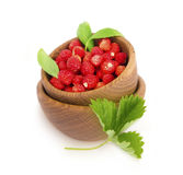 Wild small strawberries in a wooden bowl with leaves Royalty Free Stock Image