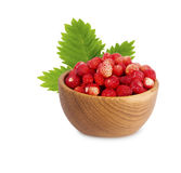 Wild small strawberries in a wooden bowl with leaves Stock Images