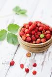 Wild small strawberry on a white board Stock Photo