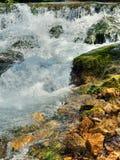 Wild spring river Stock Image