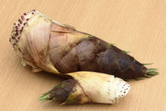 Wild spring of spring, bud of cod. We harvested wild bamboo shoots of wild vegetables Stock Photo