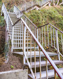 Wild Stairs Royalty Free Stock Images