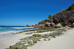 Wild stones on the white sand, Seychelles Royalty Free Stock Photography