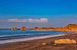 Wild strand arkivfoto