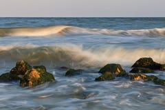 wild strand Royaltyfria Foton