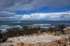 Wild strand op de Vreedzame oceaan Royalty-vrije Stock Afbeelding