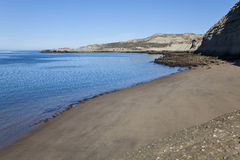 Wild strand på halvön Valdes Royaltyfri Foto