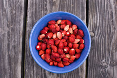 Wild strawberries. Top view of bowl full of wild strawberries on old wooden table Stock Images