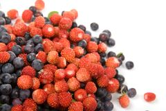 Wild strawberries and blueberries Royalty Free Stock Images