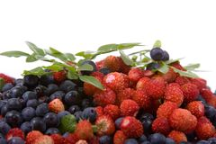Wild strawberries and blueberries Stock Photo