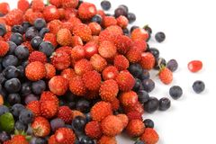 Wild strawberries and blueberries Stock Photos