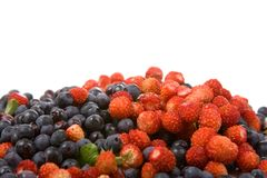 Wild strawberries and blueberries Royalty Free Stock Photos