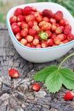 Wild strawberries in bowl Stock Photo