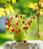 Wild strawberries bunch with flowers Royalty Free Stock Photography