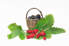 Wild strawberries and cherries in a small basket Royalty Free Stock Images