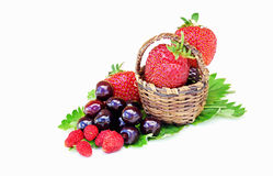 Wild strawberries cherries and strawberries in a small basket Stock Photography