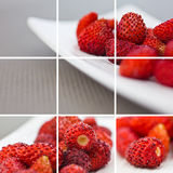 Wild strawberries collage Stock Images