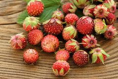 Wild strawberries Fragaria viridis on wooden background Royalty Free Stock Photography