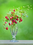 Wild strawberries in a glass Royalty Free Stock Photos