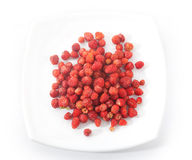 Wild strawberries Stock Photos